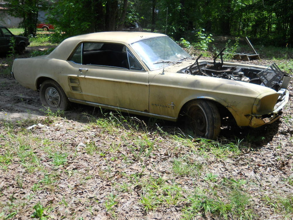 Rusting Mustangs » 1967 Mustang 6 cyl for sale06